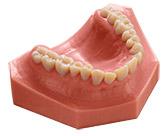 Advanced_dental_materials_mold_Dental_Selection_168x136