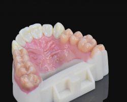 Realistische Modelle mit dem J720 Dental