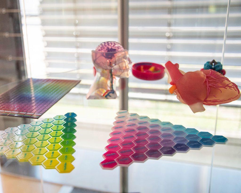 Nicht nur 3D-Drucker, auch eine Vielzahl Modelle der unterschiedlichsten Materialien erwarten Sie im Showroom